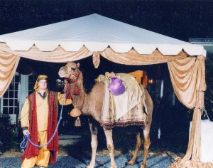camel nativity_01