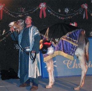 camel nativity_04