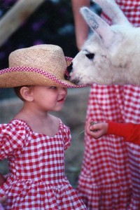 girl and llama